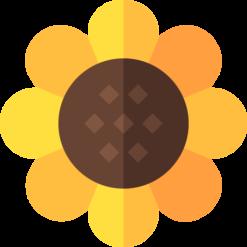 Tạo mầm hoa